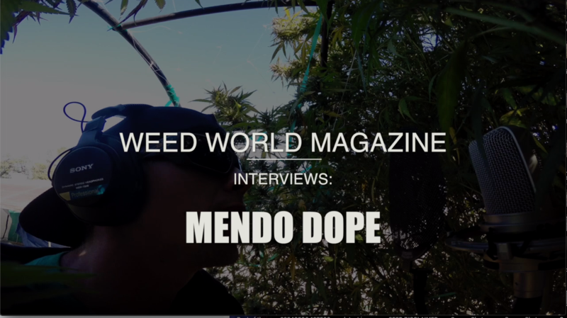 Official interview with Mendo Dope
