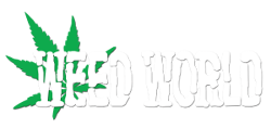 Weed World Magazine